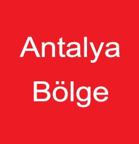 Yontar Polyester